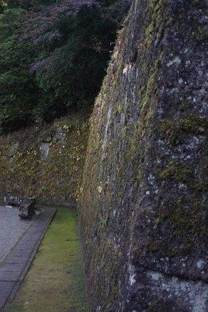 高い立派な石垣