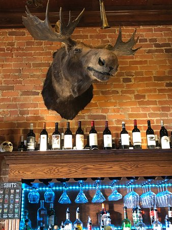 The moose