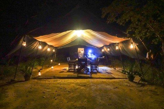 Leopard Trails Camp Wilpattu Sri Lanka Bild