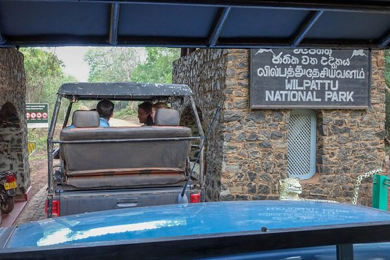 Wilpattu National Park Photo