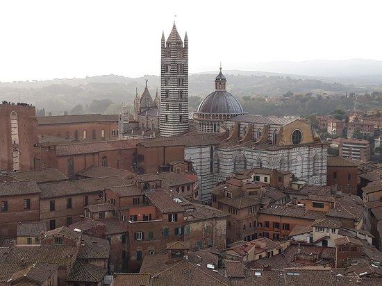 Il Duomo dalla Torre del Mangia