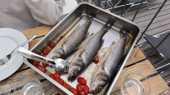 Bernstein, Austria: Gebratene Fische mit ein paar Tomaten