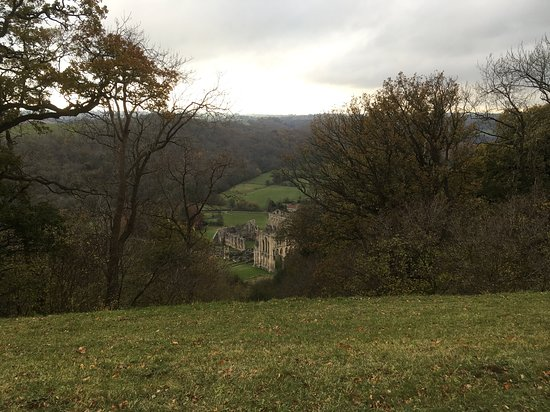 Rievaulx Terrace and Temples Picture