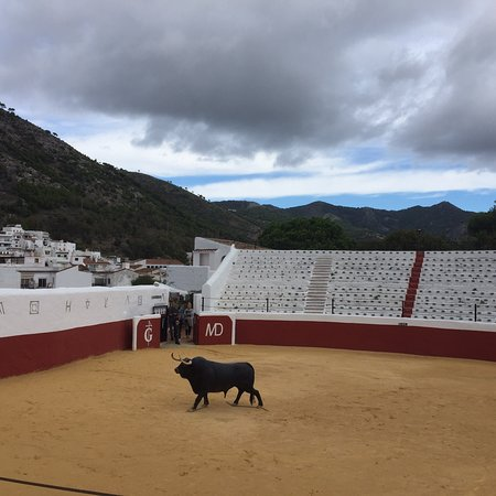 Museo Taurina de Mijas - 2019 All You Need to Know BEFORE