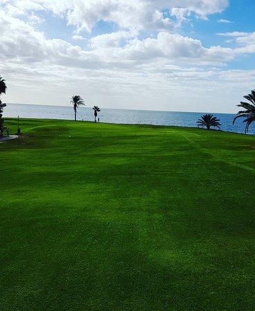 Amarilla Golf and Country Club 이미지