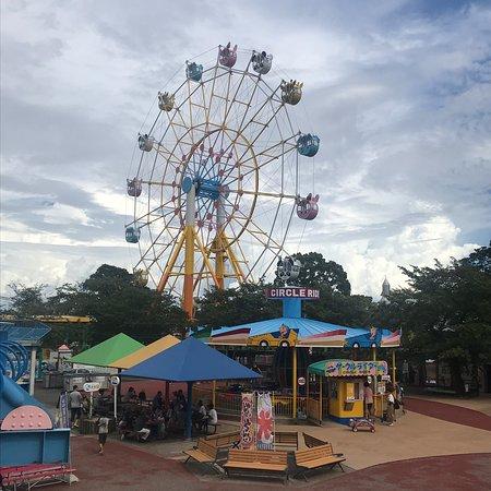 Kobe Oji Zoo: 併設された遊園地の観覧車全景。