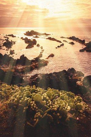 Bilde fra Mosteiros