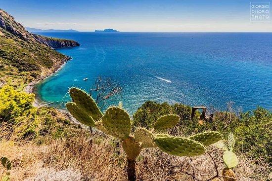 Ecotour Ischia