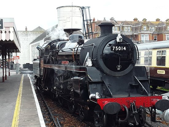 Dartmouth Steam Railway and River Boat: Our train - Braveheart