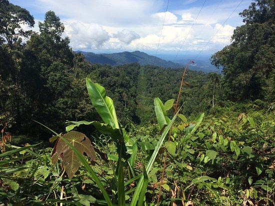 Bukit Fraser, Malaysia: Maxwell Trail Summit