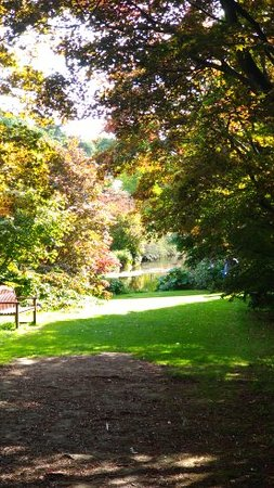 Mount Usher Gardens: View down the path