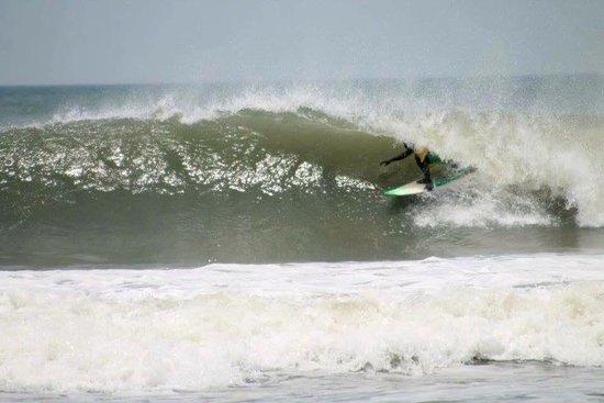 Aloha Surf India