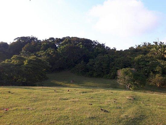 Zdjęcie San Juan