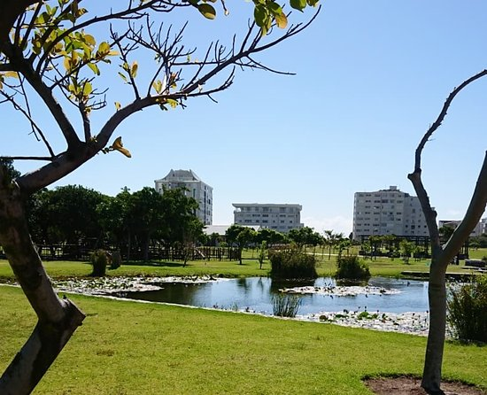 Greenpoint Park and Biodiversity Garden