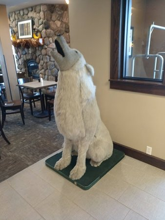 Gray Wolf Inn and Suites Picture