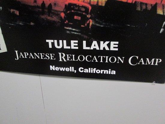 Zdjęcie Tulelake