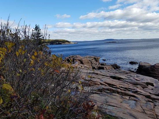 Oli's Trolley - Acadia National Park Tour: Frenchman's Bay Acadia National Park