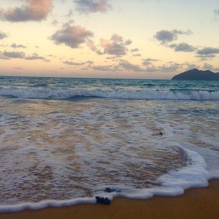 Wonga Beach Foto