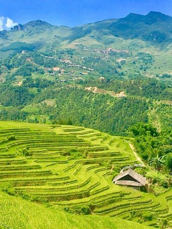 Go SaPa Trek-Tour Photo