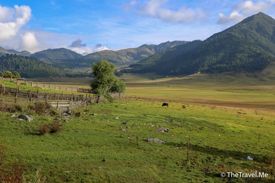 Wangdue Phodrang District Foto