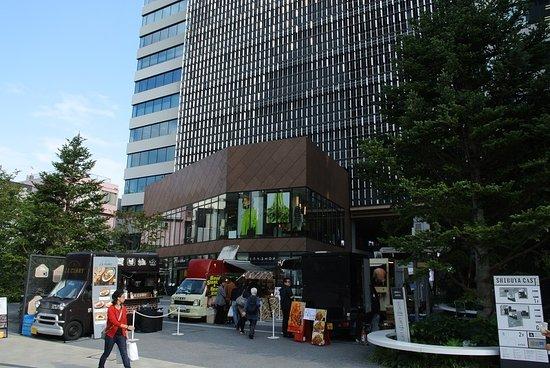 Shibuya Cast