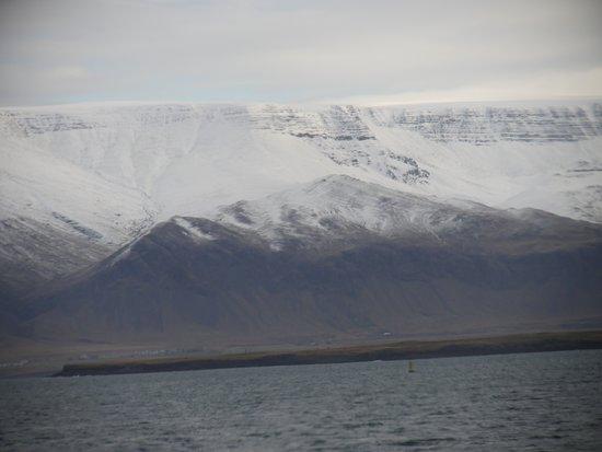 The view of Mount Esja