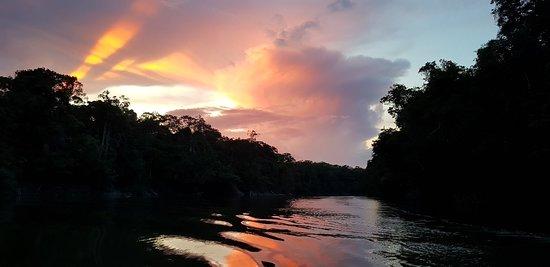 Bilde fra Rupununi