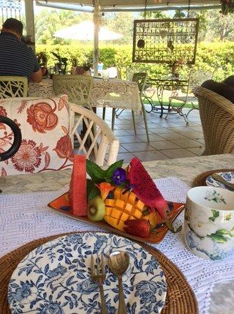 Gorgeous breakfast fruit plate