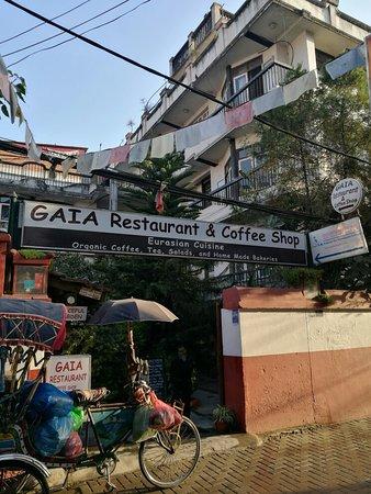 Gaia. 카트만두 레스토랑