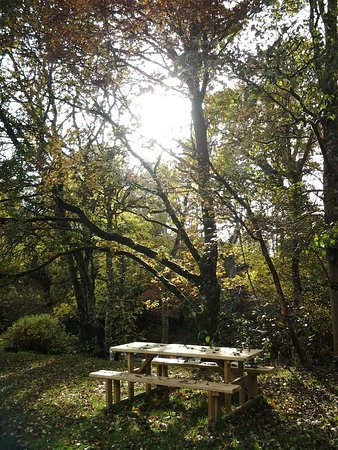 Manons Riverside Cafe: You can pick up your lunch from Manon's and have yourself a picnic next to the river