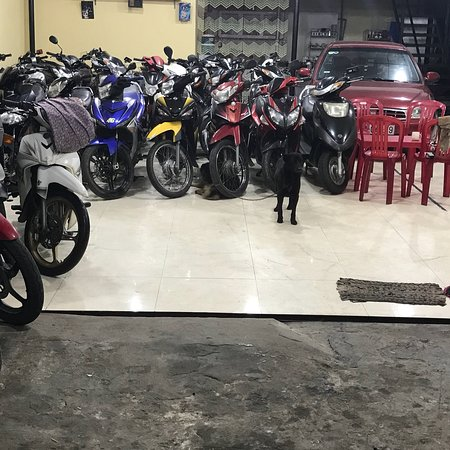 Dong Xanh Motorbikes For Rent