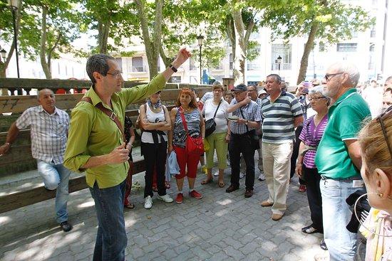 Destino Navarra Guias Turisticos