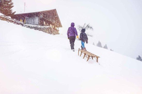 Valais, Suisse : Famille, luge