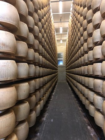 Bologna Food Experience: Factory Visits with Gourmet Lunch and Wine Tasting: so much cheese!