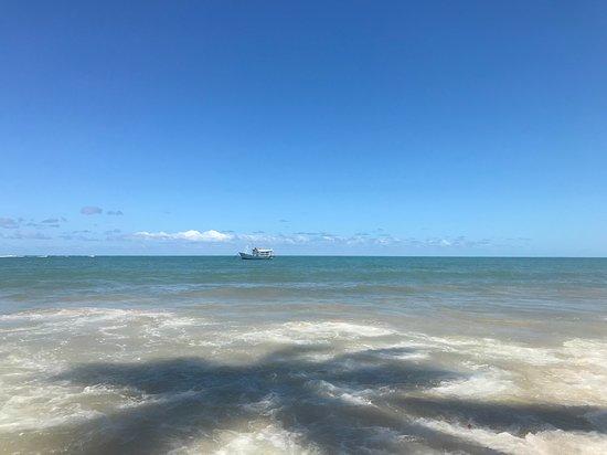 Praia dos Coqueiros Foto