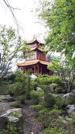 Chinese Garden of Friendship صورة