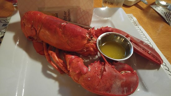 Billy's Stone Crab, Seafood & More: Not a 2 lb lobster