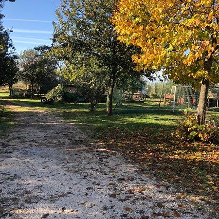Petrignano d'Assisi-billede