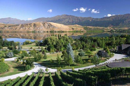 Bald Hills Wines