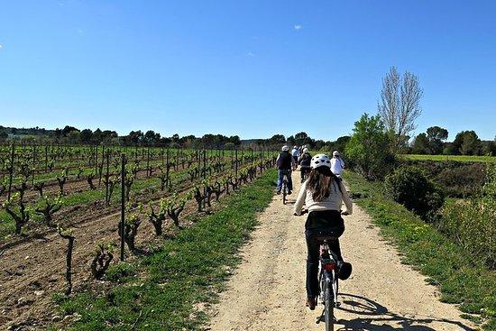 Full-day Bike Tour Through the...