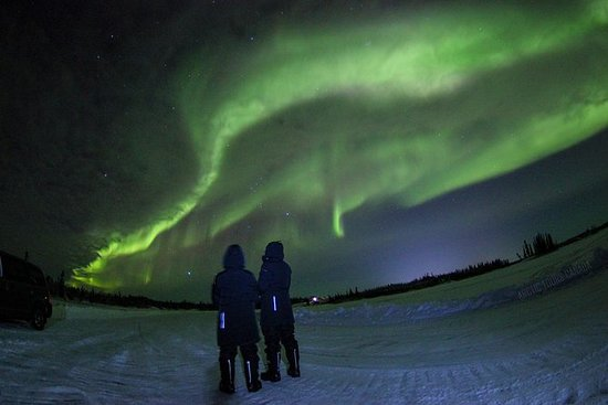 Northern Lights Tour de Yellowknife