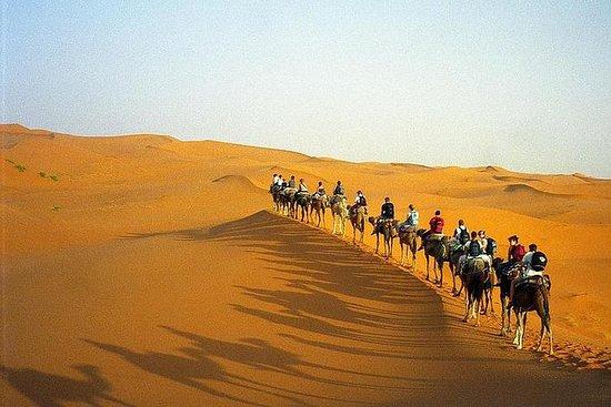 Overnight Desert Trip from Marrakech...