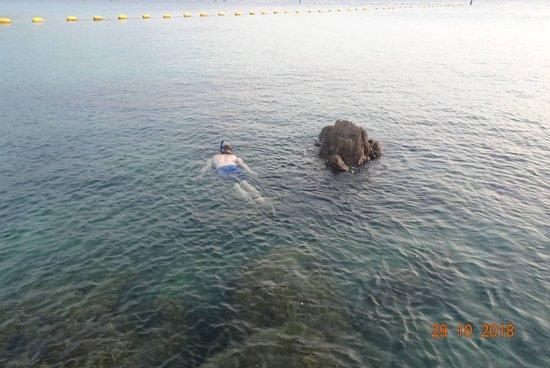 Samae Beach Picture