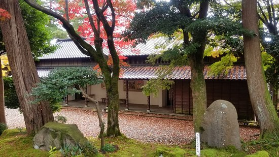 Zdjęcie Kashiwazaki