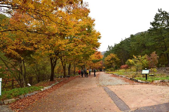 Daejeon, Zuid-Korea: Tell travellers more about your photo