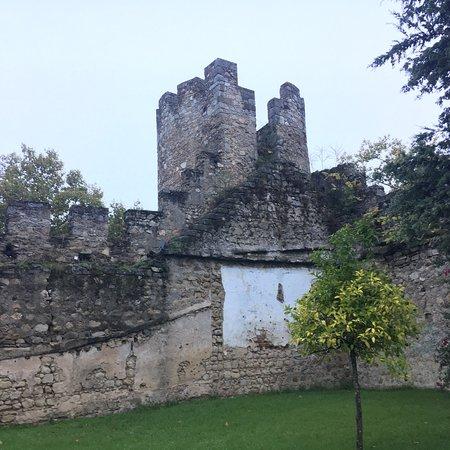 Roman wall in my back yard