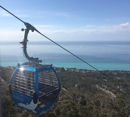 Arthurs Seat Eagle All You Need To Know Before You Go Updated