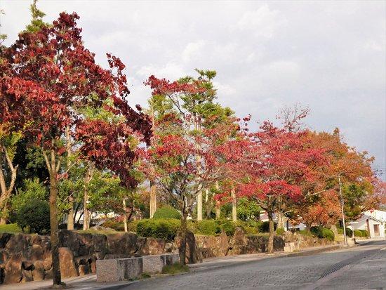 Denchu Garden