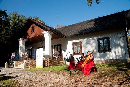 Muzeum Dwor w Dołedze