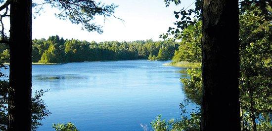 Fedingesjön